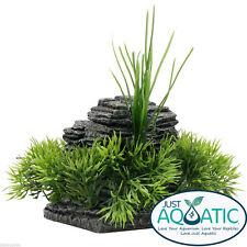Plastic Plant