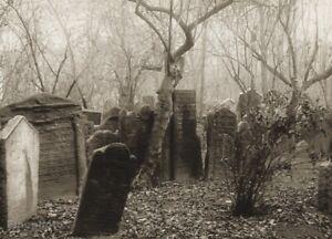 1950 Vintage Josef Sudek Prague Old Jewish Cemetery Tomb Landscape Photo Gravure