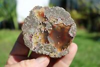 Succor Creek Thunderegg Fantastic colors and patterns FREE Ship! Lot #0728G