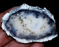 167.50 CT Natural African Dendrite Opal Specimen 64 x 46 mm FACET Rough !