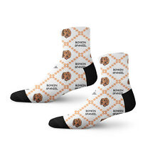 Boykin Spaniel Dog Paws Fun Cool Novelty 3.5 in Men Women Socks
