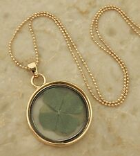 Saint Patricks Day Green Real Dried Four Leaf Clover Shamrock Gold Necklace