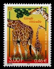 Giraffen. Naturhistorisches Museum, Paris. 1W. Frankreich 2000