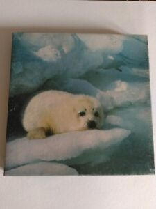 "Springbok Vintage Jigsaw Puzzle ""Furry"" Baby Seal Complete"