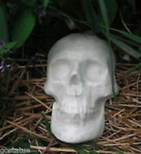 """skull plastic mold plaster cement mould 8"""" x 5.5"""" x 2"""" deep C more molds in stor"""