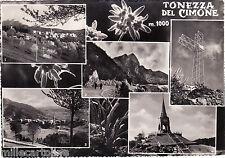 #TONEZZA DEL CIMONE