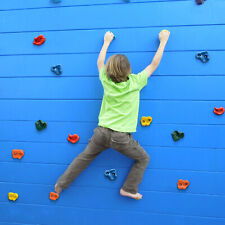 10 Pcs Rock Climbing Holds Wall Stones and 20 Pcs Screws Indoor Outdoor for Kid