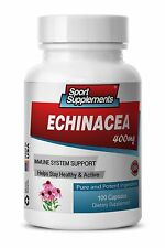 Natural Immune System Piils - Echinacea Powder 400mg - Glycoproteins Powder 1B
