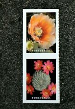 2019USA Forever Cactus Flowers - Set of 2 Postage Stamps From Booklet  Mint
