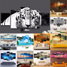 Unframed Modern Art Oil Painting Print Canva Picture Home Wall Room Decoration