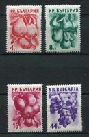 37632) BULGARIA 1956 MNH** Fruits 4v Scott# 929/32