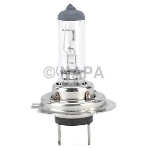 Headlight Bulb-AWD NAPA/ADVANTAGE BULBS-AVB 1255H7