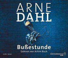 Bußestunde von Arne Dahl (2013)