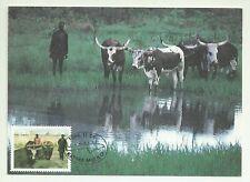SWA 1986 - Maxicard Caprivi / Cattle