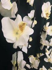BNIB Orchid 242 Bulb 11 Drop Light Curtain. IP64. Wedding Event Backdrop Flower