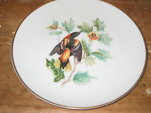 BAVARIA GERMANY BALTIMORE ORIOLE FROM DRAWING AUDUBON CERAMIC COLLECT BIRD PLATE