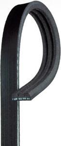 Gates K030334SF Automotive V-Ribbed Stretch Fit Belt