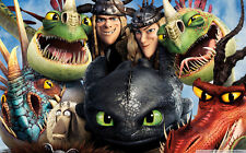 """How to Train Your Dragon 1 2 Wall Movie 21""""x13"""" Poster H24"""