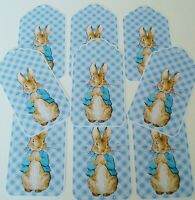 Peter Rabbit Party Favor Gift Tags Glossy Finish - Baby Shower Christening