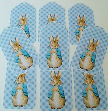 Peter Rabbit Party Favor Die Cut Tags Glossy Finish Baby Shower/  Christening