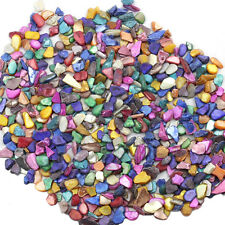 LEMO 600Pcs Art Crafts Mixed Color Shells Mosaic Tiles Home Decor TO459