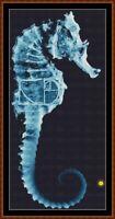 FRINGE 1 - SEAHORSE cross stitch pattern PDF (point de croix) [TV]
