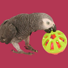 Papageienspielzeug ! Jingle Play Ball !  Für alle die Glocken lieben ! Neuheit !
