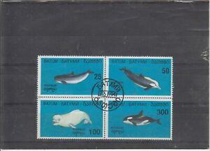 Batum  Strip  Dolphins  used