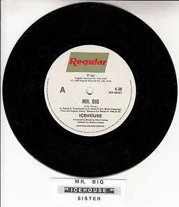 "ICEHOUSE  Mr. Big  7"" 45 rpm vinyl record + juke box title strip"