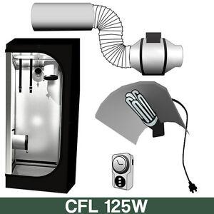 GrowBox Allestita CFL 125W Crescita + Omaggio
