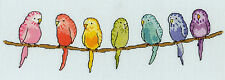 BOTHY THREADS ROW OF BUDGIES COUNTED CROSS STITCH KIT - NEW 30x10cm XR09