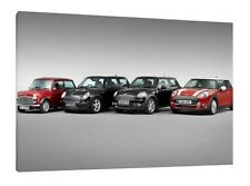 Mini Evolution - 30x20 Inch Canvas - Framed Picture Print Wall Art