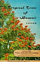 Tropical Trees of Hawaii Dorothy & Bob Hargraves 1964,130 Full Color Pictures