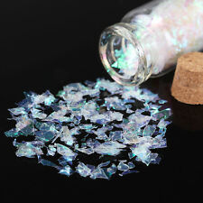 Nail Art Shiny Laser Holographic Crushed Glitter Foils Tips Manicure DIY