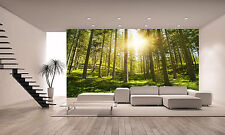 Photo Wallpaper  Sunny Forest  GIANT WALL DECOR PAPER POSTER FOR BEDROOM