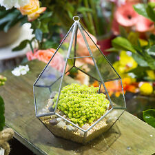 Silver Hanging Teardrop Diamond Shape Glass Geometric Terrarium Succulent Cacti