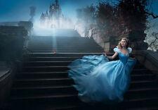 Art Poster Christian Louboutin  Cinderella   Print