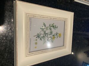 John Lewis Photo Gallery Hanging Frame Set of 6. NEW. 5-7 inch photo size.