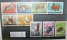 ITALIA TRIESTE B JUGOSLAVIA 1954 FAUNA ANIMALI TIMBRATI USED LOT (C.W)