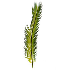 Artificial Leaf Cycas Palm 57cm/22 Inches Pack of 8