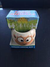 Buzzy Sheep Grass Grow Kit Farm Animals Italian Ryegrass