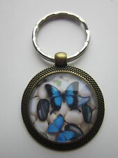 Key ring butterfly glass cabochon pendant gift present