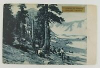 Postcard Lumberjacks on Lunch Break at Timber Line Mt Tacoma Washington