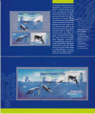 1995 AAT Antarctic Whales & Dolphins - Post Office Pack