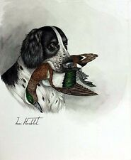 "Jean Herblet French Artist 17""x13"" Original Watercolor Springer Allemand, Wigeon"