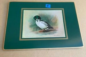 1 Place Mat Matador Lady Clare Wild Duck Mallard Basil Ede Vintage England E