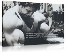 More details for arnold schwarzenegger bodybuilding motivation quote canvas wall art print