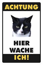 Atención gato motivo 2 chapa escudo Escudo de chapa de metal metal Tin sign 20 x 30 cm
