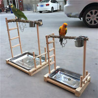 Parrot Tree Bird Stand Wood Parrot Stand Bird Training Tree Toy Play Gym Center
