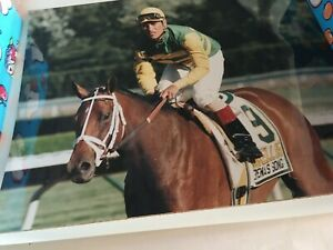 SERENA`S SONG 1995 HASKELL INVITATIONAL STAKES GR I Original RACETRACK PHOTO